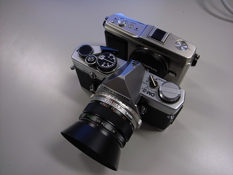 R1003252.jpg